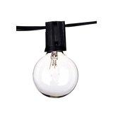 Desdemona 14 Light String Light byWilliston Forge