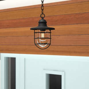Finnigan 1-Light Outdoor Hanging Lantern