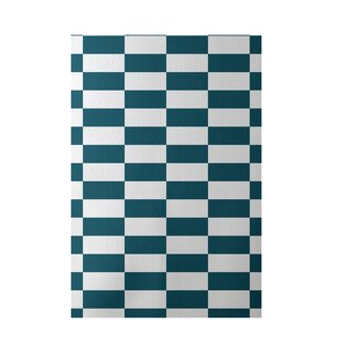 Plaid Hand-Woven Teal Indoor/Outdoor Area Rug