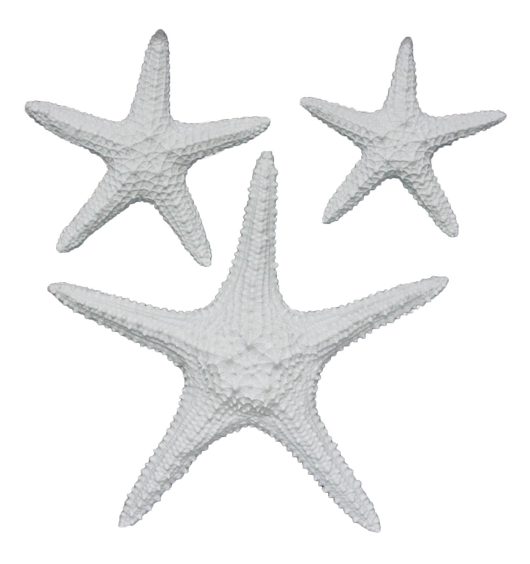 Fetco Home Decor Yelton 3 Piece Starfish Wall Décor Set U0026 Reviews | Wayfair