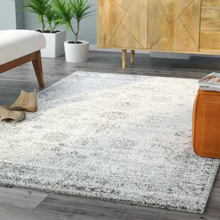 Top Reviews Brandt Gray Area Rug by Mistana