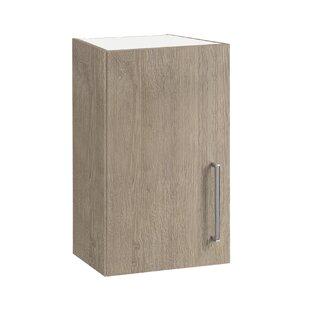 Renda 30 X 57.6cm Wall Mounted Cabinet By 17 Stories