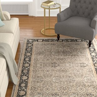 Look for Petronella Gray/Black Area Rug ByCharlton Home