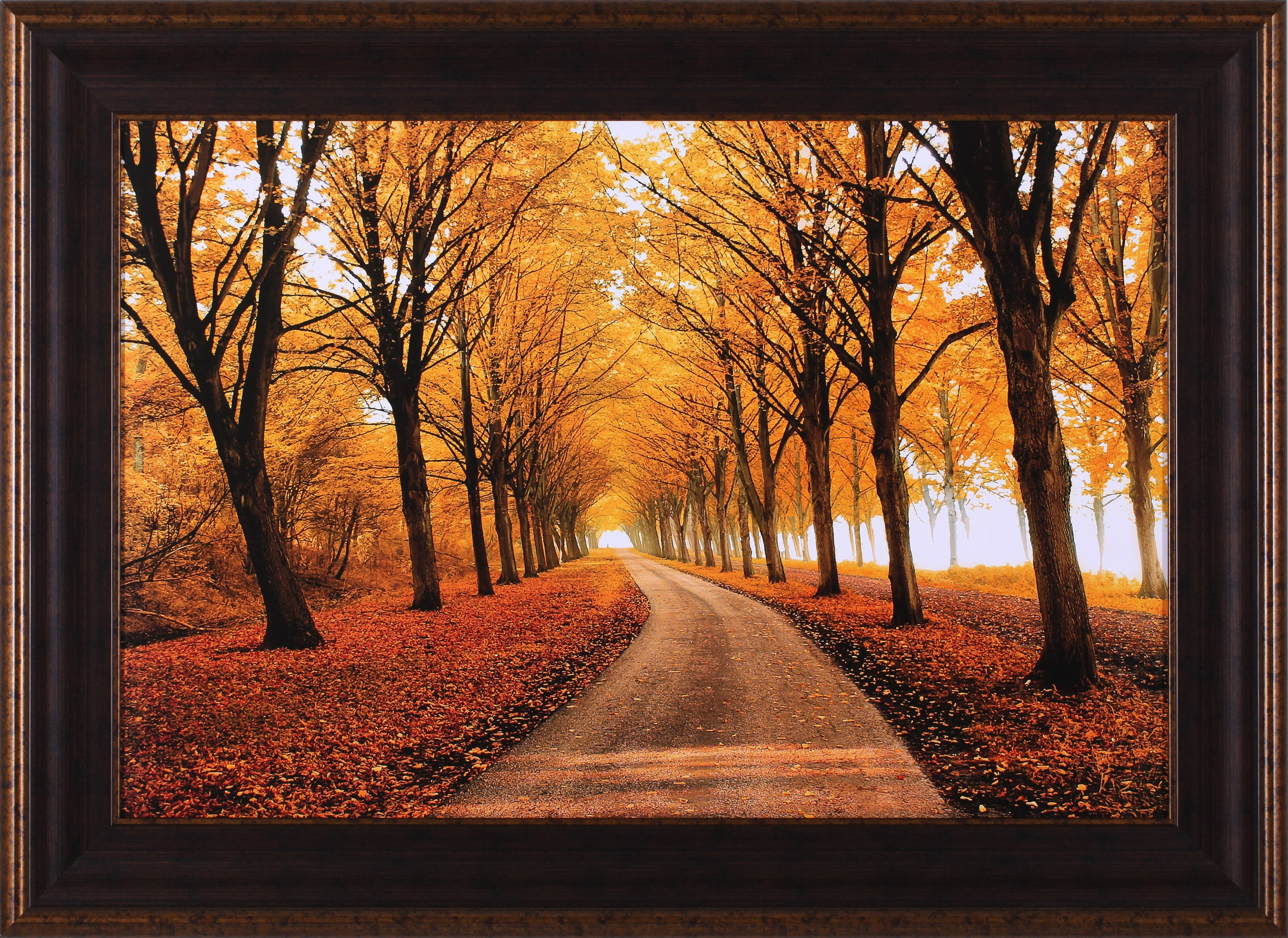 Framed Photographic Prints And Posters Wall Art You Ll Love In 2021 Wayfair