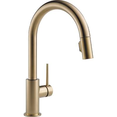 K 99261 Cp Sn Vs Kohler Artifacts Pull Down Bar Faucet With