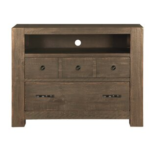 17 Stories Bjoern 2 Drawer Media Chest