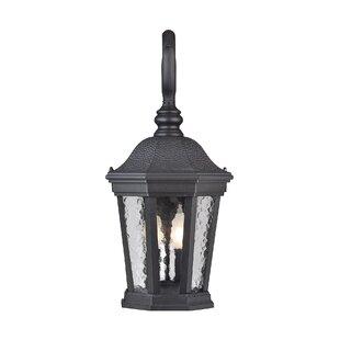 Comparison Alorton 2-Light Outdoor Wall Lantern By Fleur De Lis Living