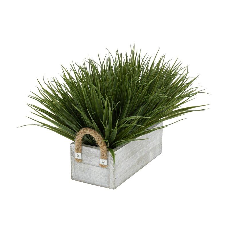 Gracie Oaks Artificial Onion Grass in Planter   Wayfair