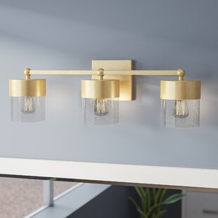 Everly Quinn Ozella 3-Light Vanity Light with Clear Seeded Glass