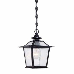 Top Reviews Bruggeman 1-Light Outdoor Hanging Lantern By Three Posts