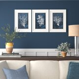 Wood Coral - 3 Piece Picture Frame Graphic Art Print Set on Paper