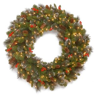 Artificial christmas wreaths youll love wayfair spruce pre lit wreath with 50 battery operated white led lights mozeypictures Gallery