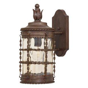 Gracie Oaks Calem 1-Light Outdoor Wall Lantern