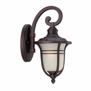 Berryhill Outdoor Wall Lantern