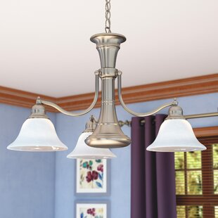Andover Mills Omaha 4-Light Shaded Chandelier