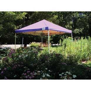10 Ft. W x 10 Ft. D Metal Pop-Up Canopy by ShelterLogic