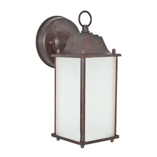 Buy clear 1-Light Outdoor Wall Lantern By Sunset Lighting
