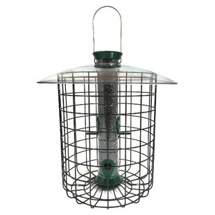 Droll Yankees Sunflower Domed Hanging Tube Bird Feeder