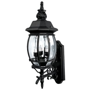 Alcott Hill Herkimer 3-Light Outdoor Wall Lantern