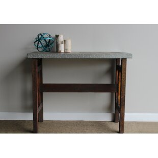 Williston Forge Bruhn Wood Console Table with Galvanized Edge