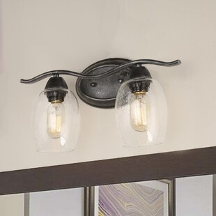 Bedgood Iron 2-Light Vanity Light by Winston Porter