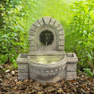 https://secure.img1-fg.wfcdn.com/im/81554796/resize-h310-w310%5Ecompr-r85/6974/69743248/concrete-lion-head-wall-fountain-with-led-light.jpg