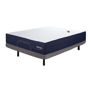Queen Adjustable Bed by Sierra Sleep
