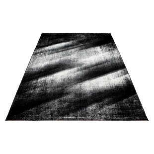 Wednesbury Black Indoor / Outdoor Rug By Brayden Studio
