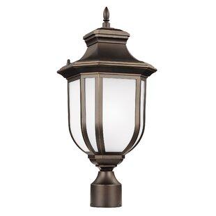 Read Reviews Teri Outdoor 1-Light LED Lantern Head By Fleur De Lis Living