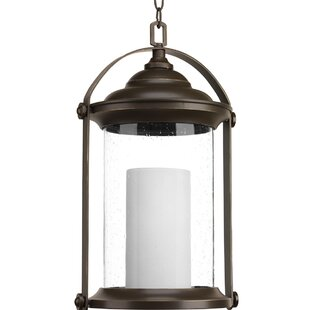 Breakwater Bay Audubon 1-Light Outdoor Hanging Lantern