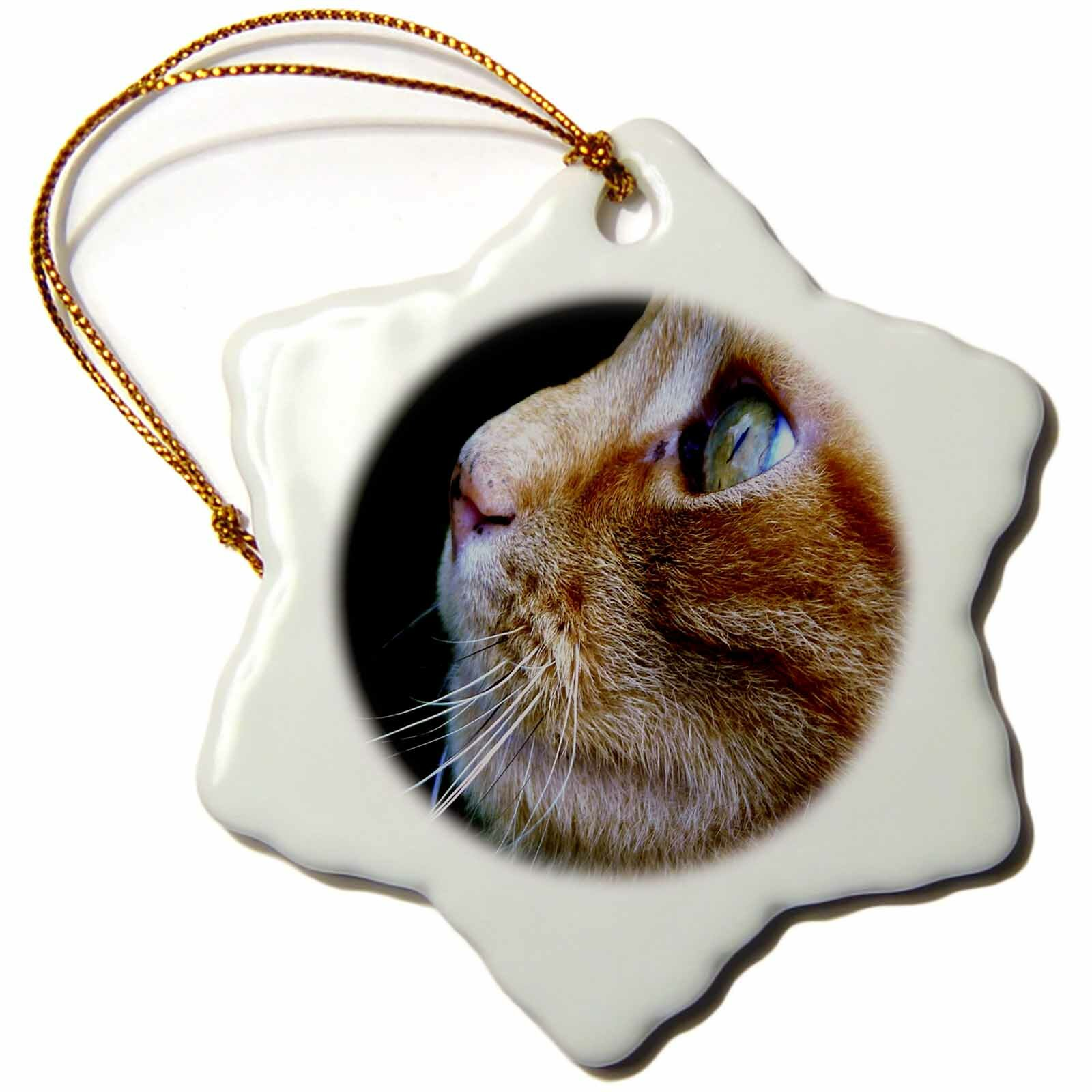 The Holiday Aisle Print Of Beautiful Closeup Of Tabby Cat Snowflake Holiday Shaped Ornament Wayfair