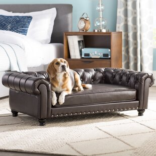 Cornelia Dog Sofa with Solid Foam Cushion By Archie & Oscar