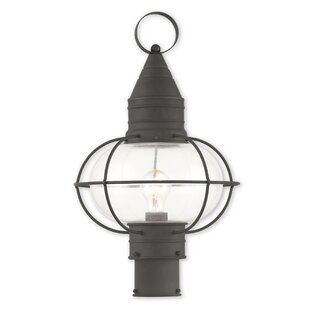 Breakwater Bay Wildwood Outdoor 1-Light Lantern Head