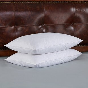 Damon Goose Medium Down and Feathers Pillow (Set of 2)