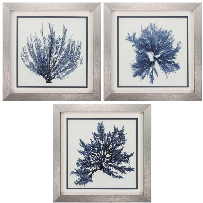 08db5926163 Coastal Seaweed 3 Piece Framed Painting Print Set   Reviews