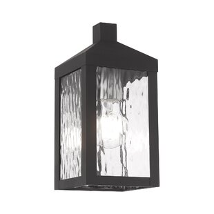 Demery Outdoor Wall Lantern