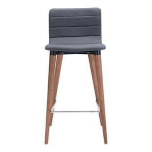 Best Bicknell Dining Chair (Set of 2) (Set of 2) by Ivy Bronx Reviews (2019) & Buyer's Guide