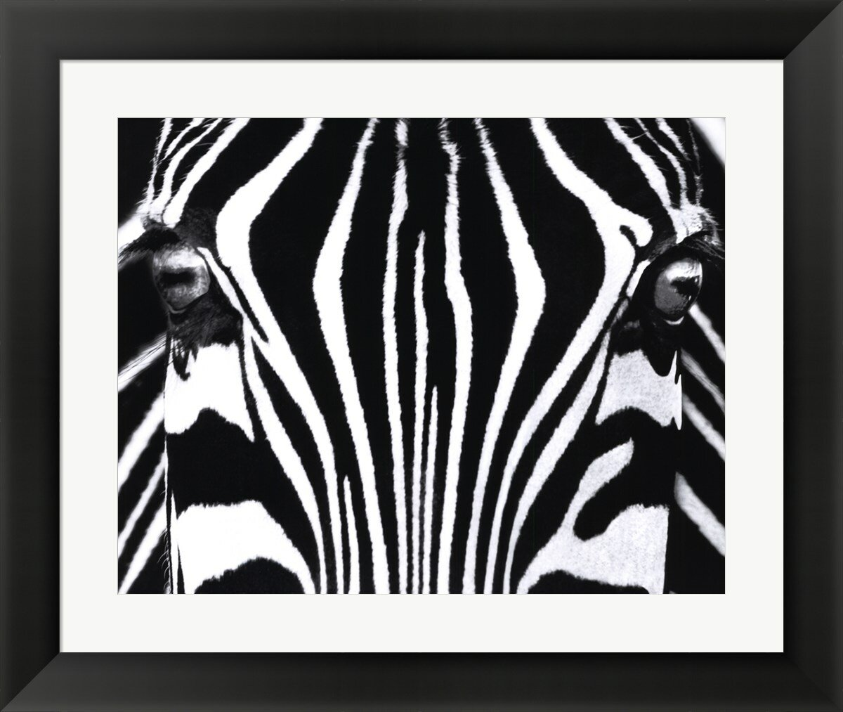 Evive Designs Black And White I By Rocco Sette Framed Photographic Print Wayfair
