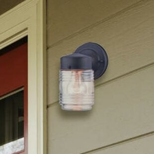 Nehls 1-Light Outdoor Sconce