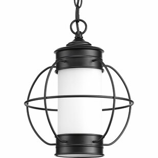 Nayeli 1-Light Outdoor Hanging Lantern