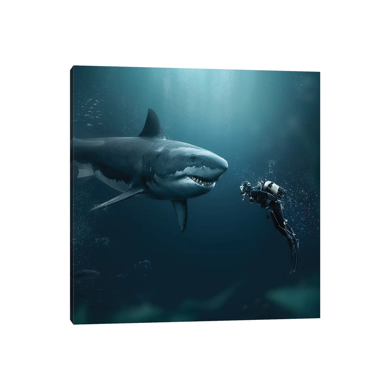 Black Shark Canvas Art You Ll Love In 2021 Wayfair
