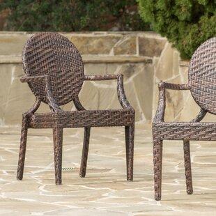 Palladino PE Wicker Outdoor Chair (Set of 2)