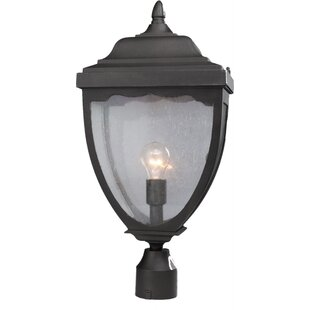 Read Reviews Boise Outdoor 1-Light Lantern Head By Alcott Hill