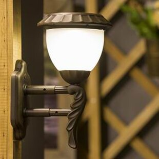 Online Reviews Hurricane 1-Light Outdoor Sconce By Winsome House