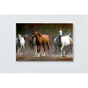 Horses Motif Magnetic Wall Mounted Cork Board By Ebern Designs
