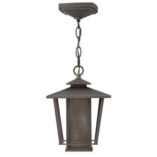 Sullivan 1-Light LED Outdoor Mini Pendant