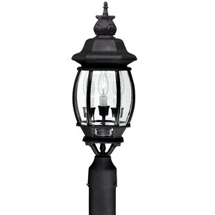 Alcott Hill Herkimer Outdoor 3-Light Lantern Head