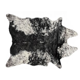 Great Price Rocket Black/White Area Rug By Williston Forge