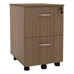 Kangas 2-Drawer Mobile Vertical Filing Cabinet