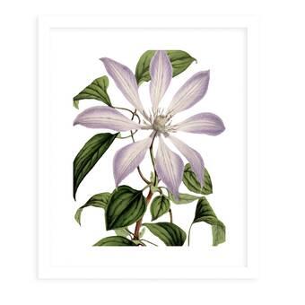Rosalind Wheeler Lovely Wildflowers 3 Piece Picture Frame Print Set On Paper Wayfair